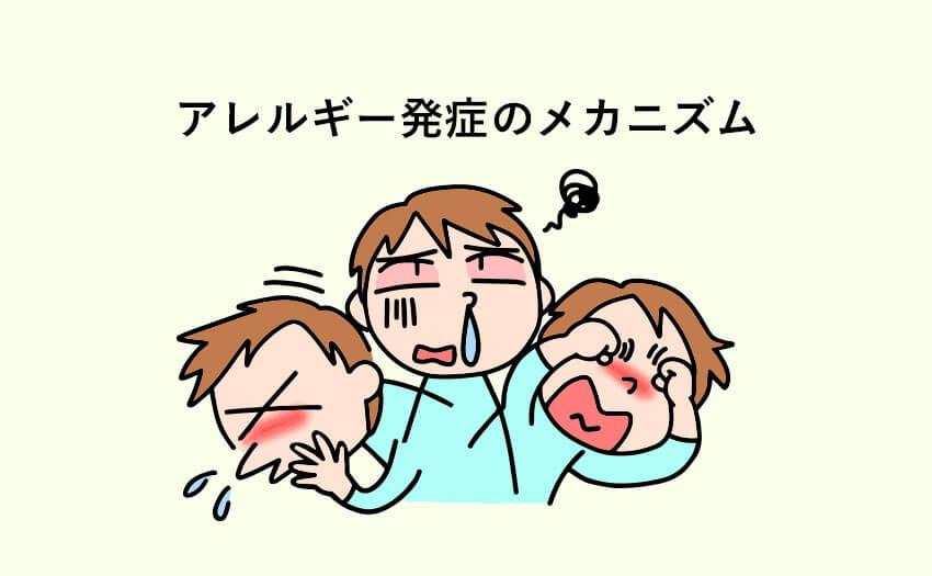アトピーや花粉症などのアレルギー発症のメカニズム